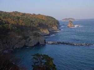 res-蛸の浜-4
