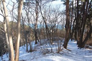 1 臼木山