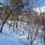 2 臼木山(ツツジ園地へ)