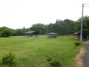 キロポスト13付近玉川野営場 (3)