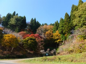 DSCF4342 臼木山